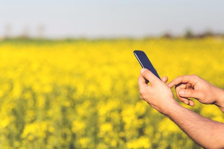 man-field-smartphone-yellow-455182-edited