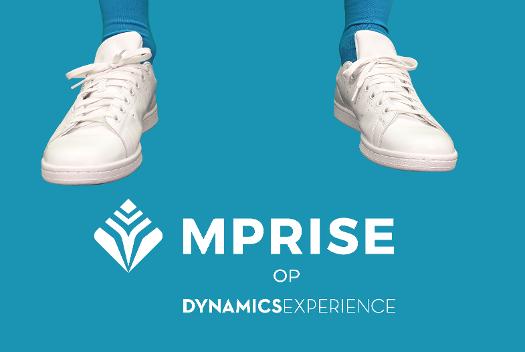 Dynamics Experience_Tekengebied 1-1