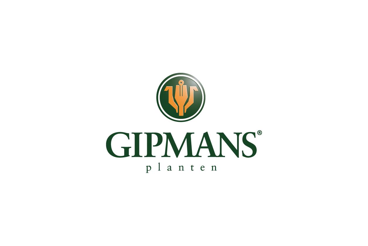 Gipmans